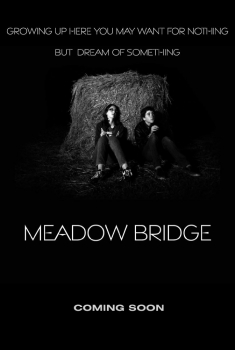Meadow Bridge (2016)