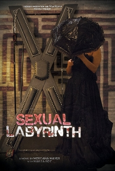 Sexual Labyrinth (2017)